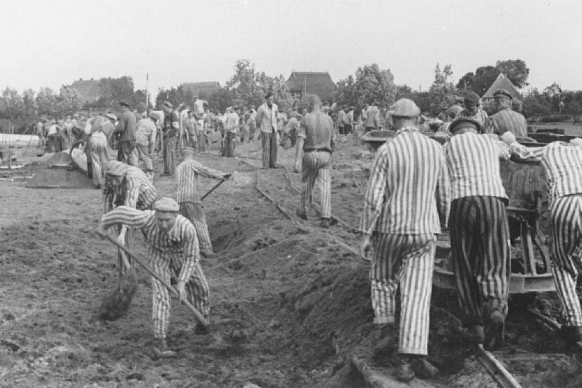 từ vựng chủ đề Holocaust - 4