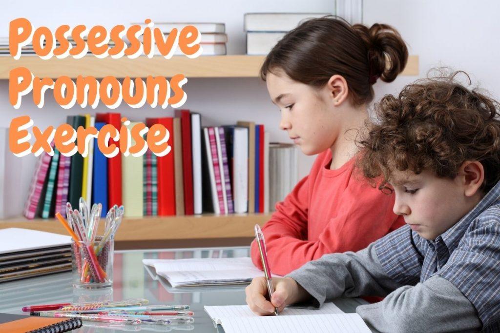 Possessive Pronouns Exercise