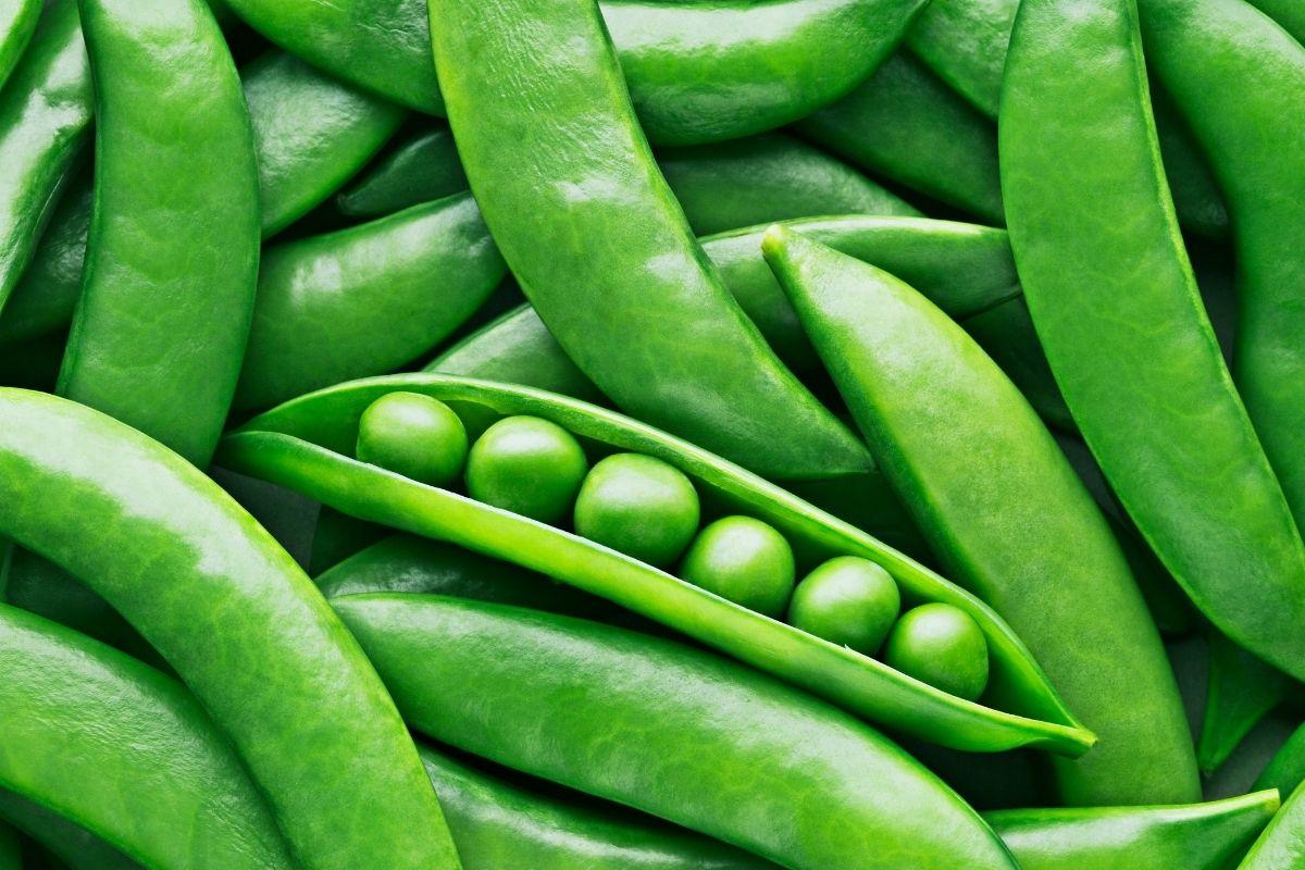 vegetables-10
