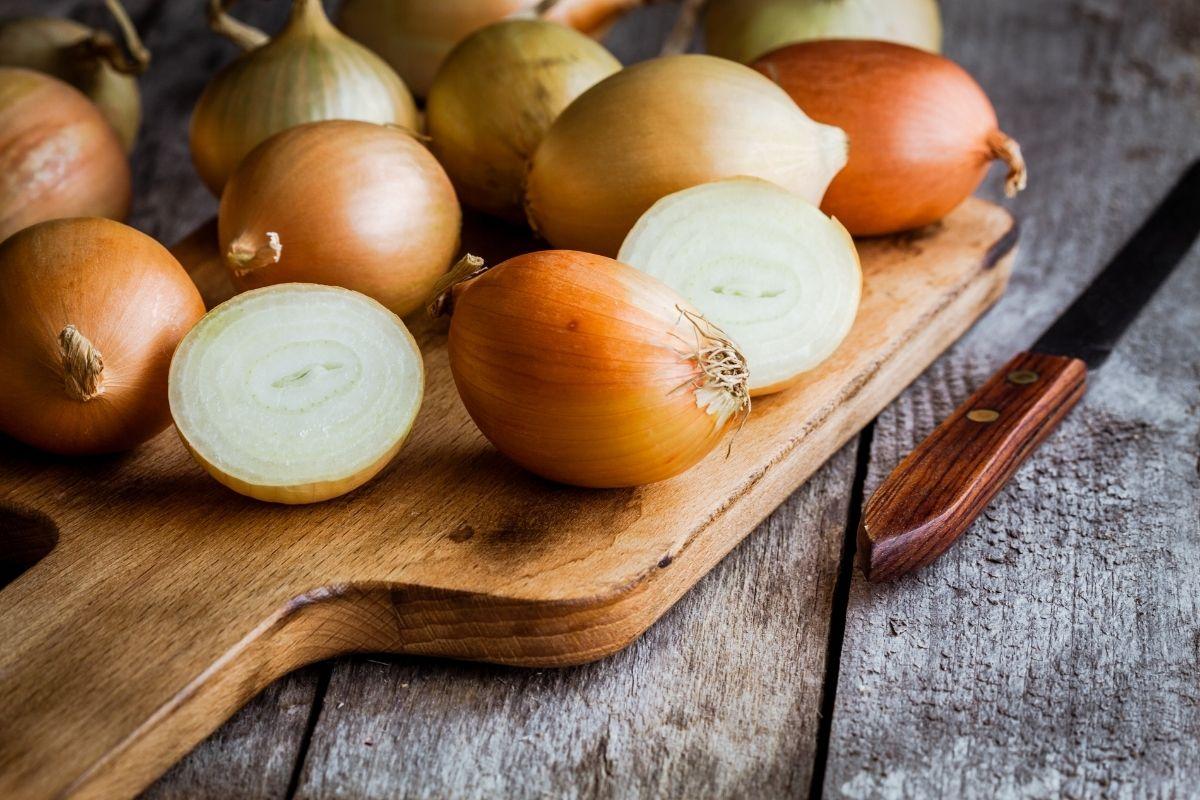 vegetables-cho-tre-lop-1-5
