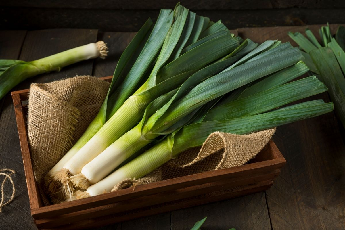 vegetables-6