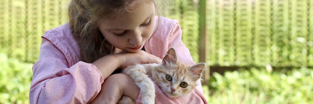 A little cute girl walking with her favorite fluffy red cat. Best friends.