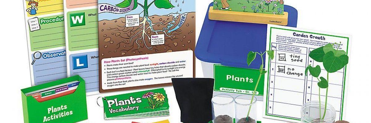 tu-vung-tieng-anh-theo-chu-de-khoa-hoc-plants